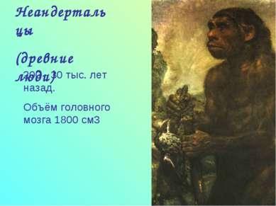 Неандертальцы (древние люди) 200 - 30 тыс. лет назад. Объём головного мозга 1...