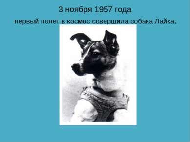 3 ноября 1957 года первый полет в космос совершила собака Лайка.