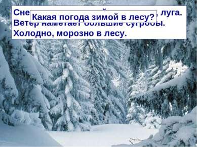 Снег укрывает зимой леса, поля, луга. Ветер наметает большие сугробы. Холодно...