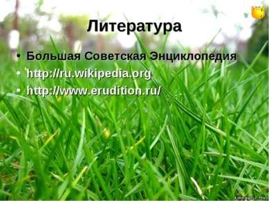Литература Большая Советская Энциклопедия http://ru.wikipedia.org http://www....