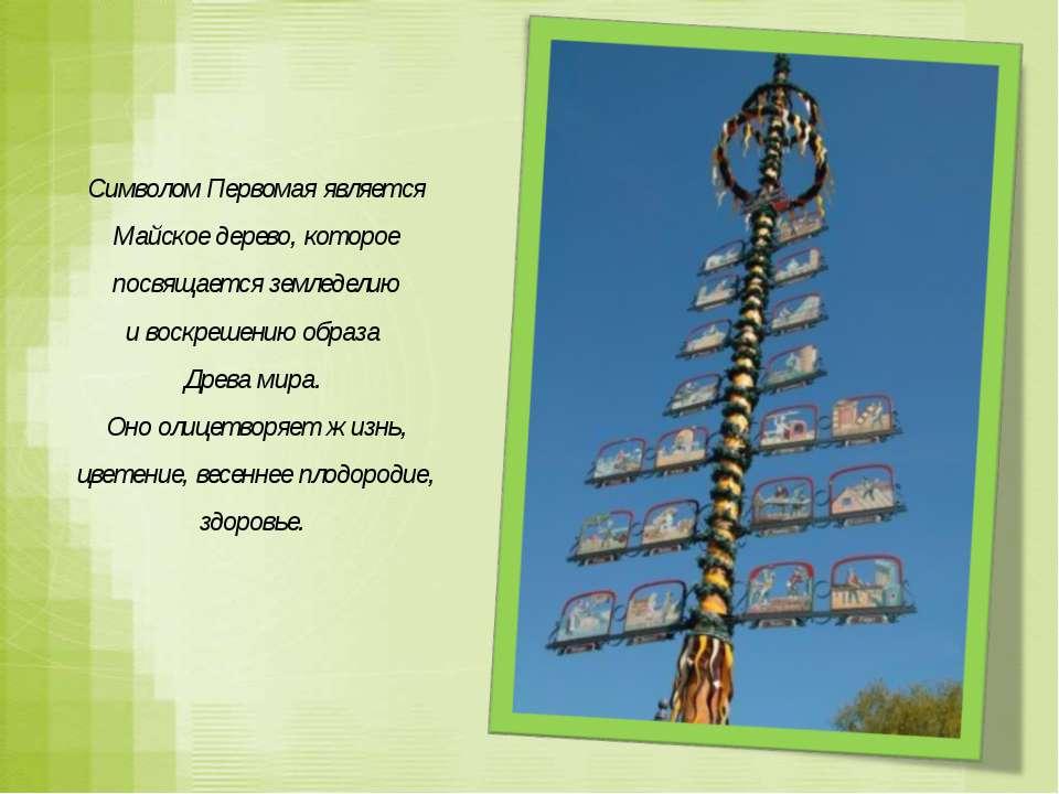 Символом Первомая является Майское дерево, которое посвящается земледелию ив...