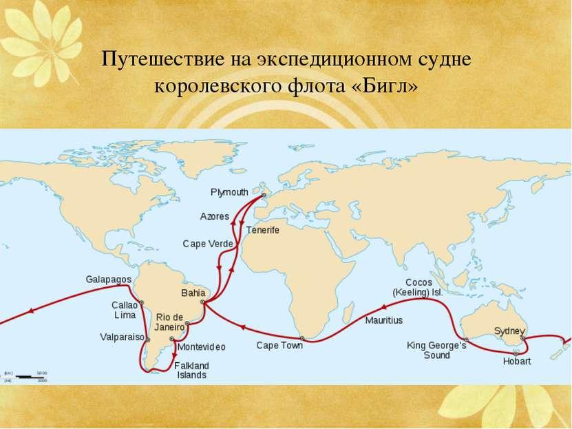 Путешествие на экспедиционном судне королевского флота «Бигл»