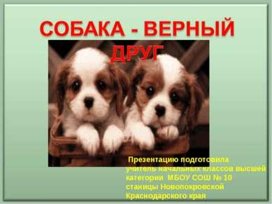 Презентацию подготовила учитель начальных классов высшей категории МБОУ СОШ №...