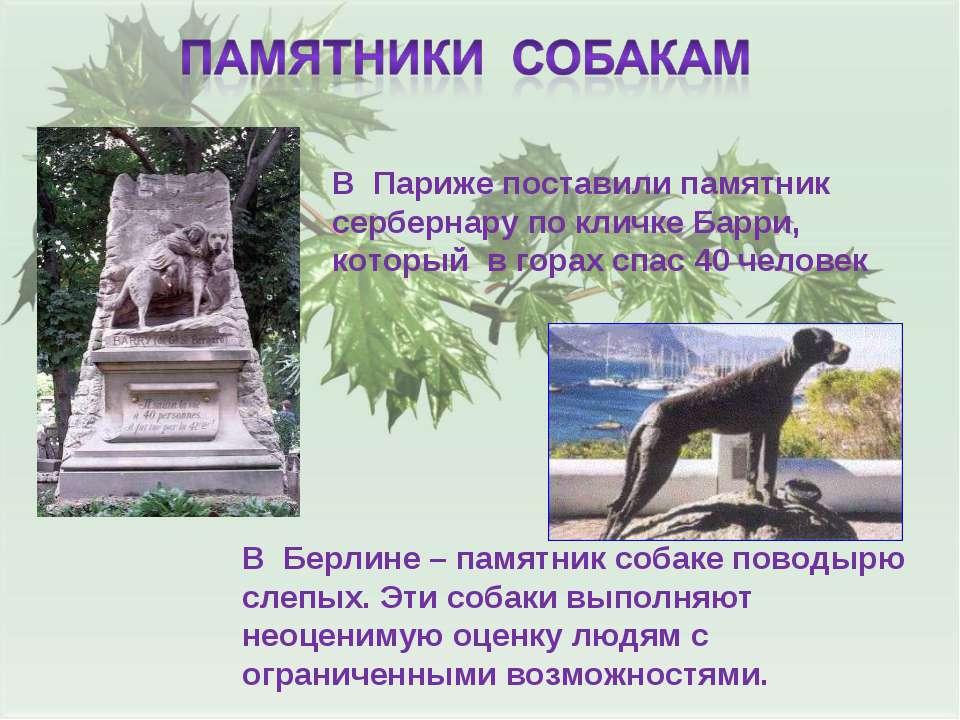 В Париже поставили памятник сербернару по кличке Барри, который в горах спас ...