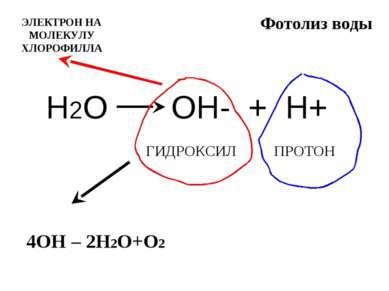 Фотолиз воды Н2О ОН- + Н+ ГИДРОКСИЛ ПРОТОН 4ОН – 2Н2О+О2 ЭЛЕКТРОН НА МОЛЕКУЛУ...