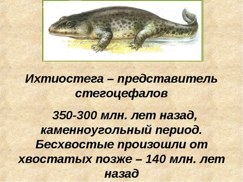 Ихтиостега – представитель стегоцефалов 350-300 млн. лет назад, каменноугольн...