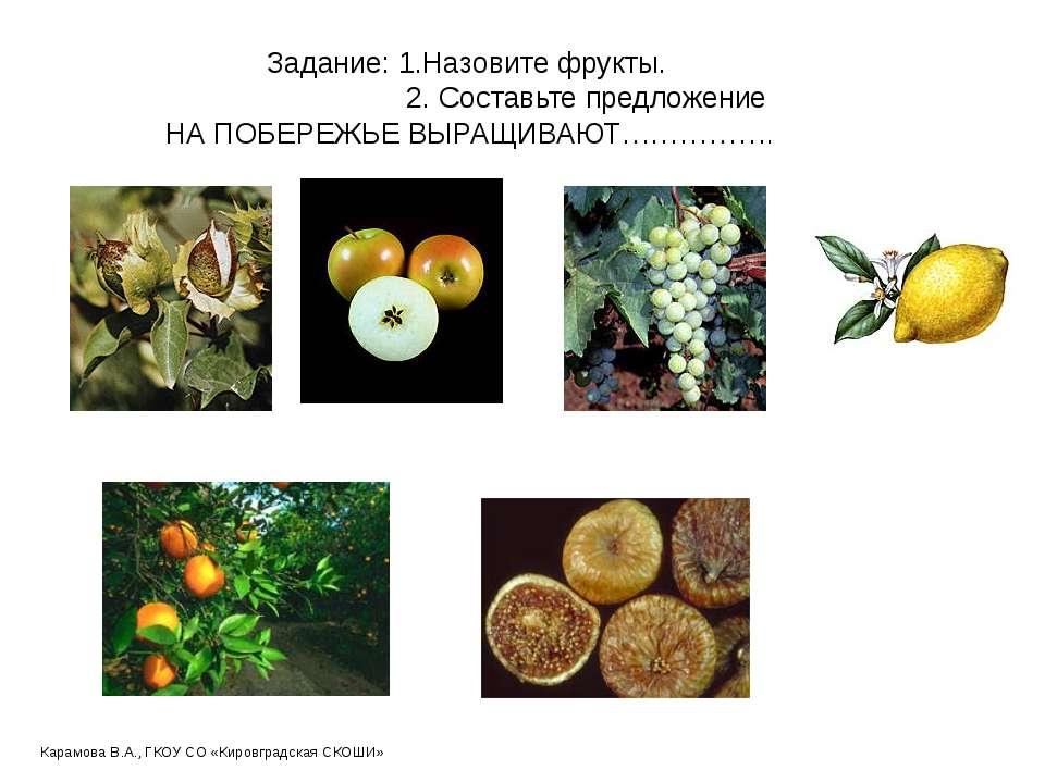 Задание: 1.Назовите фрукты. 2. Составьте предложение НА ПОБЕРЕЖЬЕ ВЫРАЩИВАЮТ…...