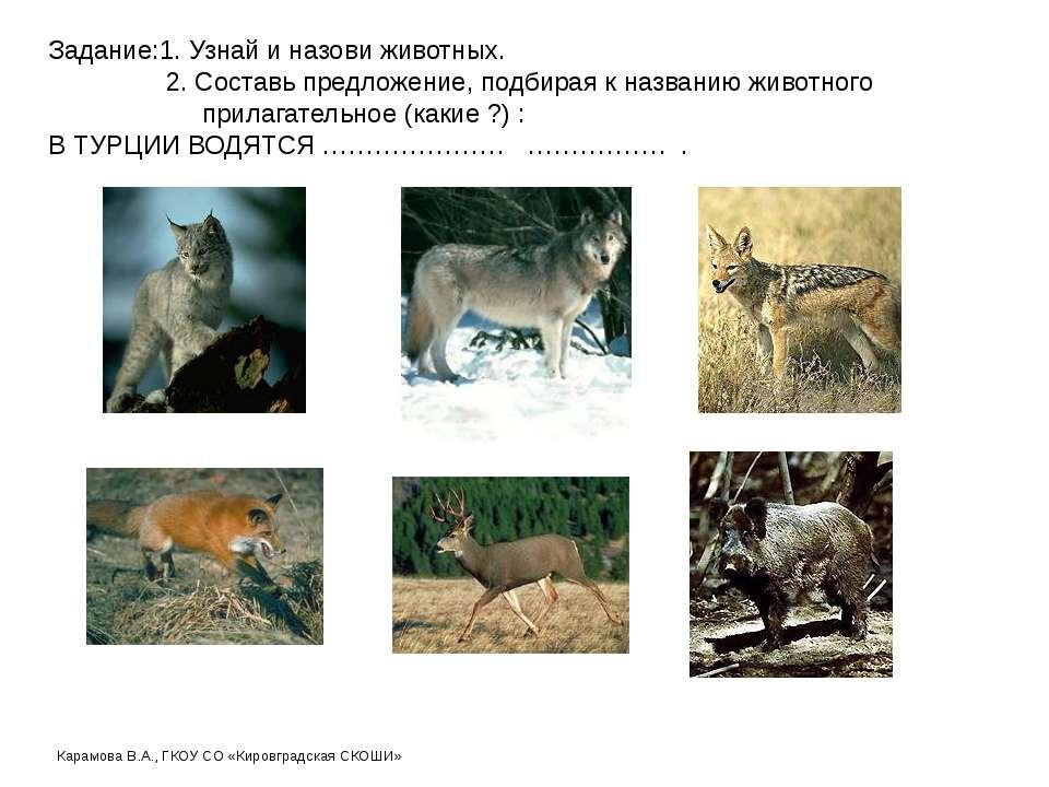 Задание:1. Узнай и назови животных. 2. Составь предложение, подбирая к назван...