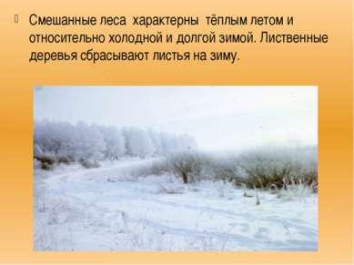 Смешанные леса характерны тёплым летом и относительно холодной и долгой зимой...