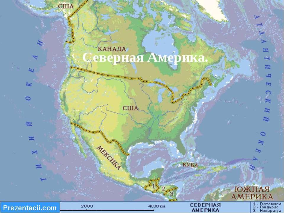 Северная Америка.