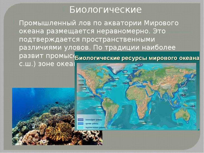 Биологические Промышленный лов по акватории Мирового океана размещается нерав...