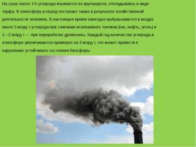 На суше около 1% углерода изымается из круговорота, откладываясь в виде торфа...
