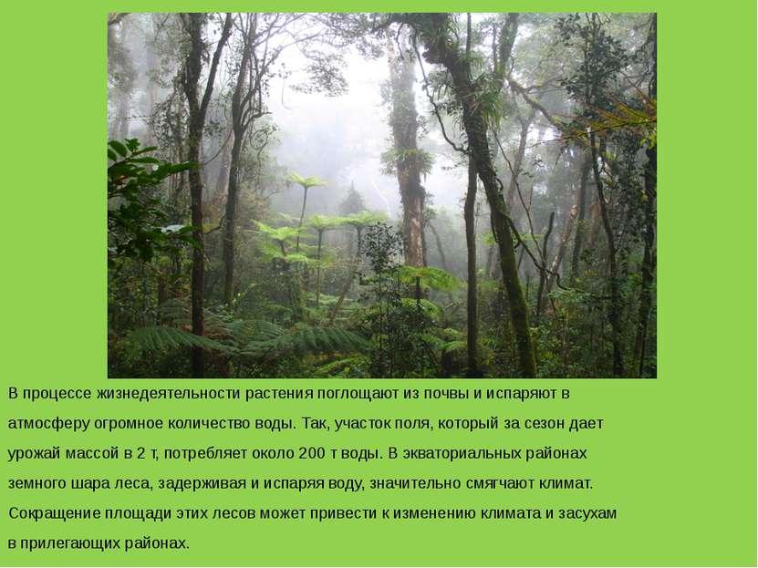 В процессе жизнедеятельности растения поглощают из почвы и испаряют в атмосфе...