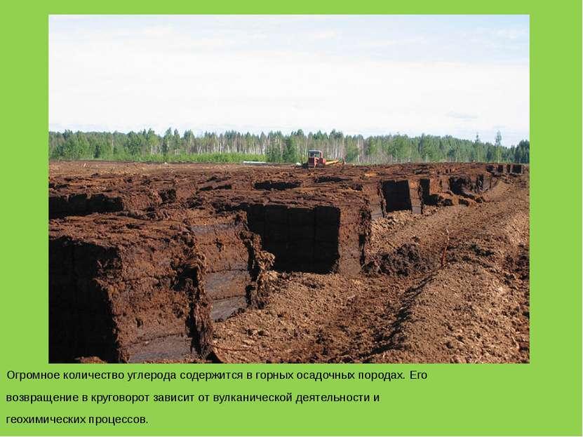 Огромное количество углерода содержится в горных осадочных породах. Его возвр...