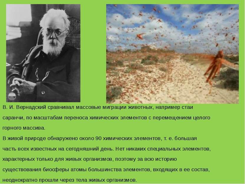 В. И. Вернадский сравнивал массовые миграции животных, например стаи саранчи,...