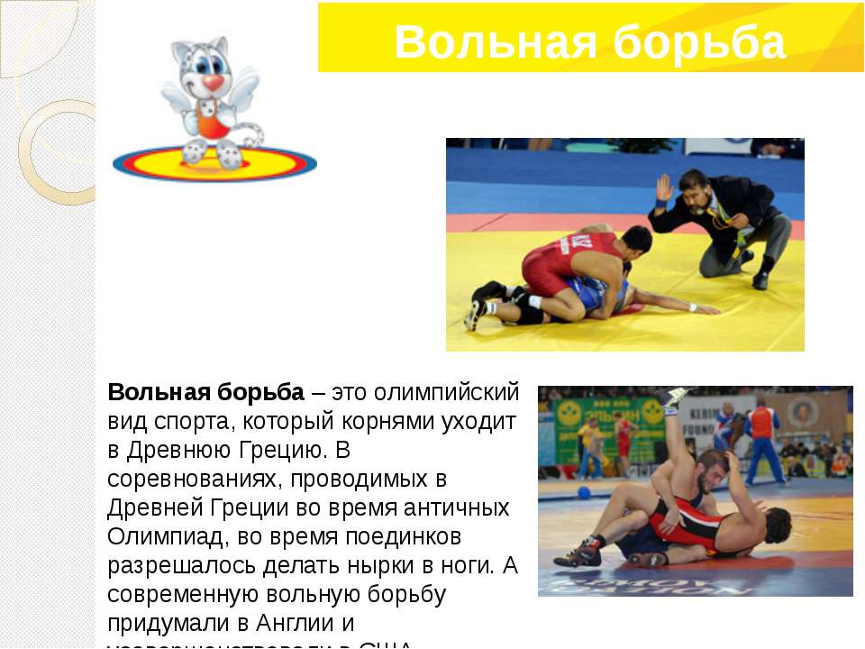 Вольная борьба – это олимпийский вид спорта, который корнями уходит в Древнюю...