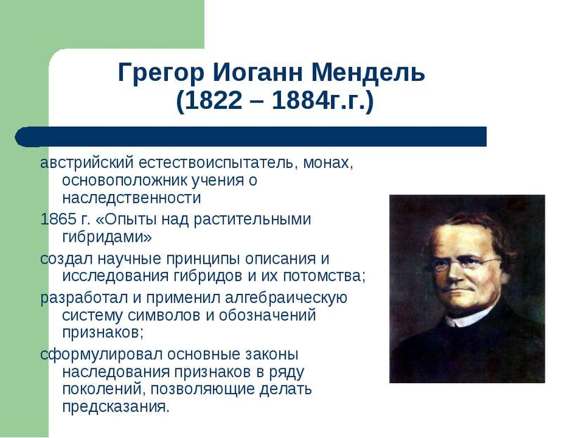 Грегор Иоганн Мендель (1822 – 1884г.г.) австрийский естествоиспытатель, монах...