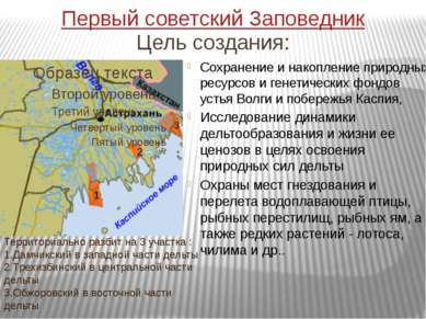 Общие сведения Площадь выросла с 23000 до 67 917 га, в т.ч. 11 298 га – морск...
