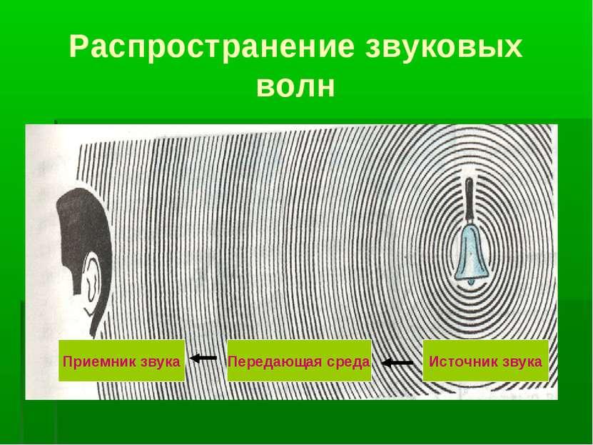 Распространение звуковых волн Источник звука Передающая среда Приемник звука