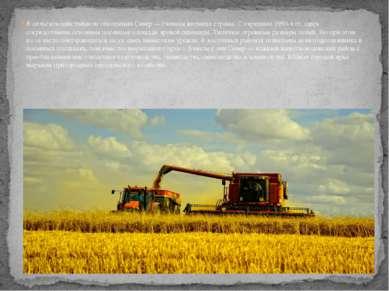 В сельскохозяйственном отношении Север — главная житница страны. С середины 1...