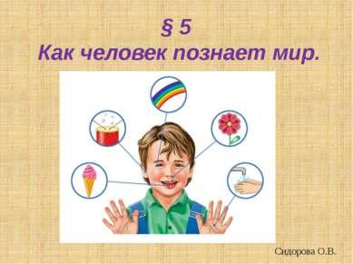 § 5 Как человек познает мир. Сидорова О.В.