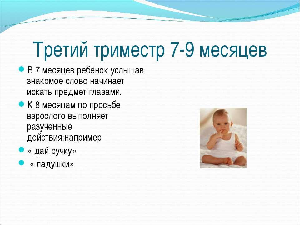 Третий триместр 7-9 месяцев В 7 месяцев ребёнок услышав знакомое слово начина...