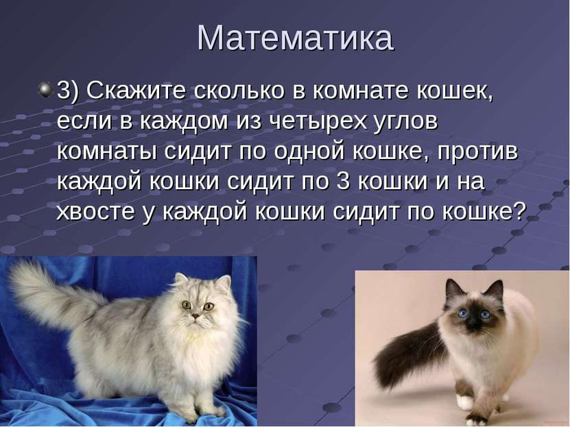 Математика 3) Скажите сколько в комнате кошек, если в каждом из четырех углов...
