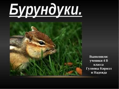 Бурундуки. Выполнили: ученики 4 В класса Гуляевы Кирилл и Надежда