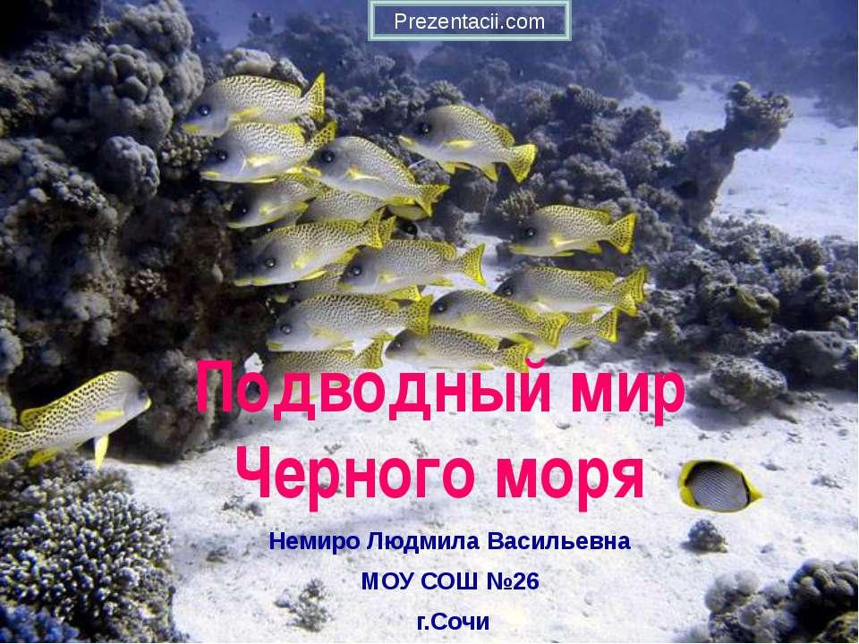 Подводный мир Черного моря Немиро Людмила Васильевна МОУ СОШ №26 г.Сочи