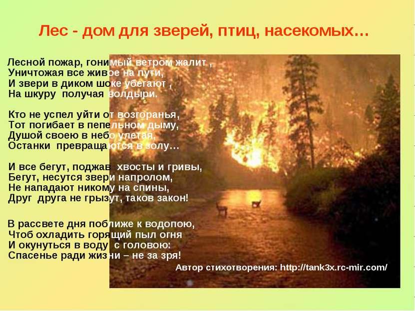 Лес - дом для зверей, птиц, насекомых… Лесной пожар, гонимый ветром жалит , У...