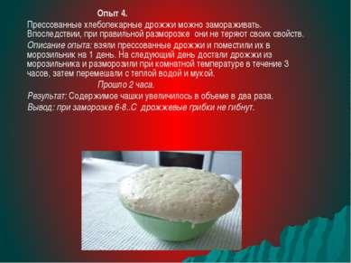 Опыт 4. Прессованные хлебопекарные дрожжи можно замораживать. Впоследствии, п...