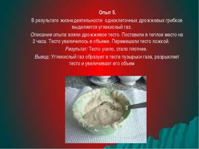 Опыт 5. В результате жизнедеятельности одноклеточных дрожжевых грибков выделя...
