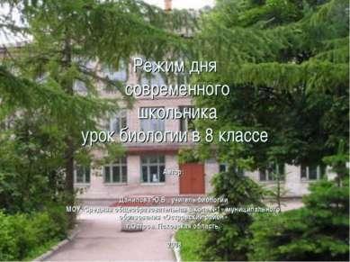 Режим дня современного школьника урок биологии в 8 классе Автор: . Данилова Ю...