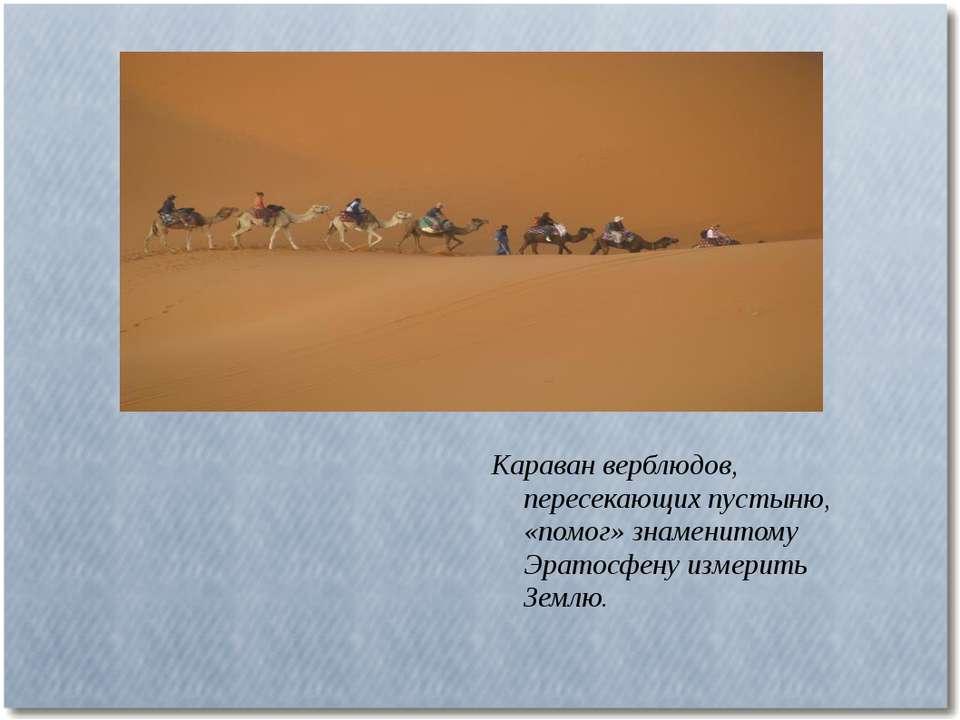 Караван верблюдов, пересекающих пустыню, «помог» знаменитому Эратосфену измер...
