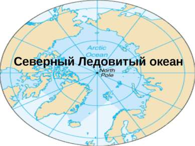 Северный Ледовитый океан Площадь: 14,75 миллионов кв. км. Средняя глубина: 12...