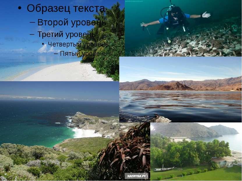 Северный Ледовитый океан— наименьший по площади океан Земли, расположен полн...