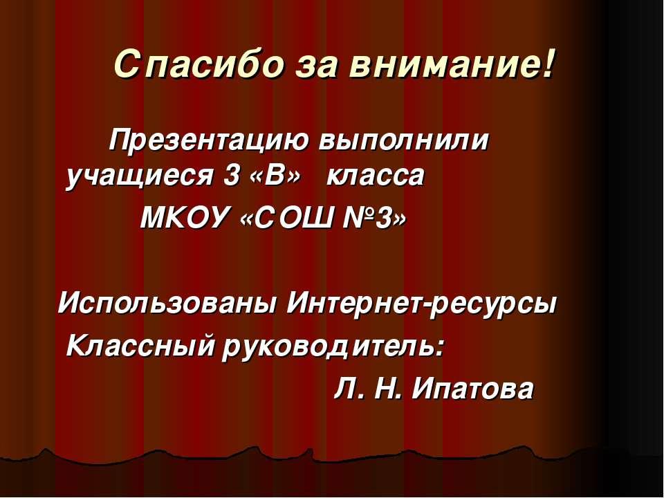 Спасибо за внимание! Презентацию выполнили учащиеся 3 «В» класса МКОУ «СОШ №3...