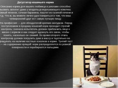 Дегустатор кошачьего корма Описание корма для вашего любимца в рекламе способ...