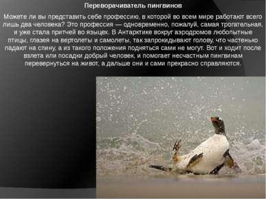 Переворачиватель пингвинов Можете ли вы представить себе профессию, в которой...