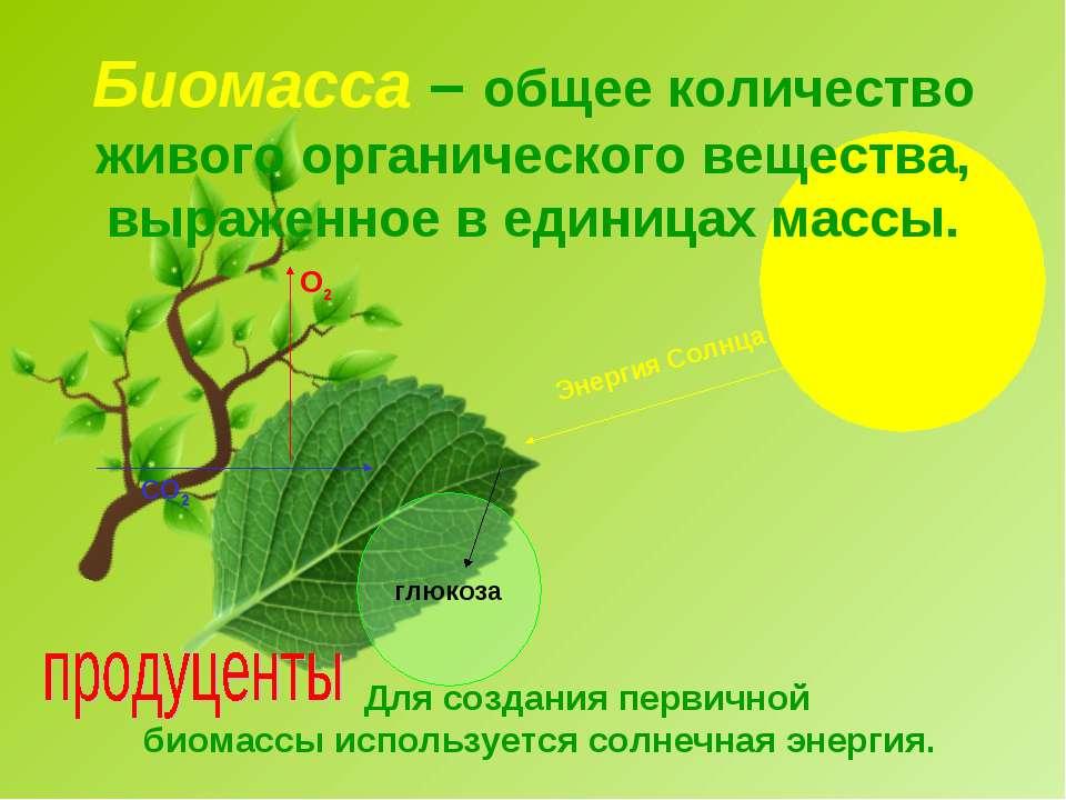 Биомасса – общее количество живого органического вещества, выраженное в едини...