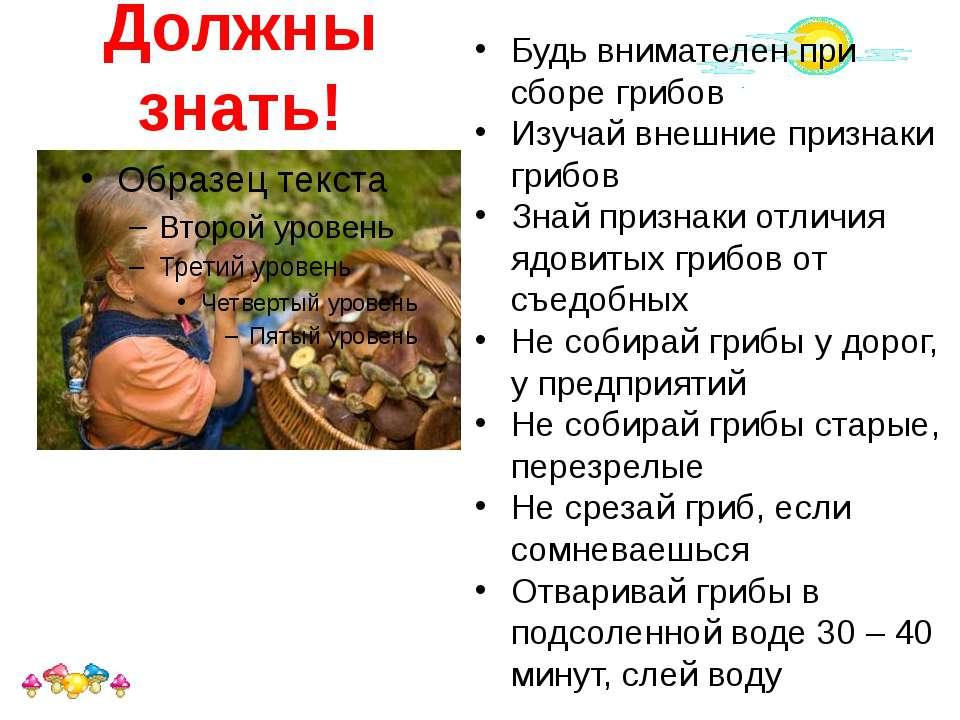 Должны знать! Будь внимателен при сборе грибов Изучай внешние признаки грибов...