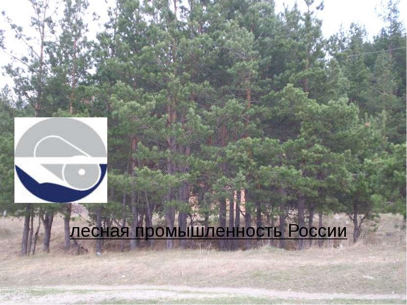 лесная промышленность России