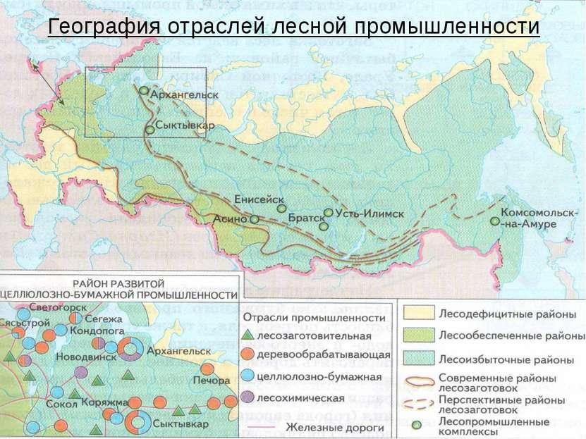География отраслей лесной промышленности