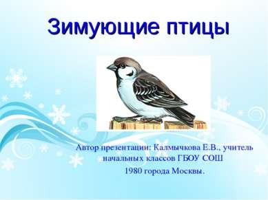 Зимующие птицы Автор презентации: Калмычкова Е.В., учитель начальных классов ...