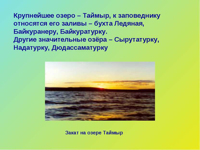 Крупнейшее озеро – Таймыр, к заповеднику относятся его заливы – бухта Ледяная...