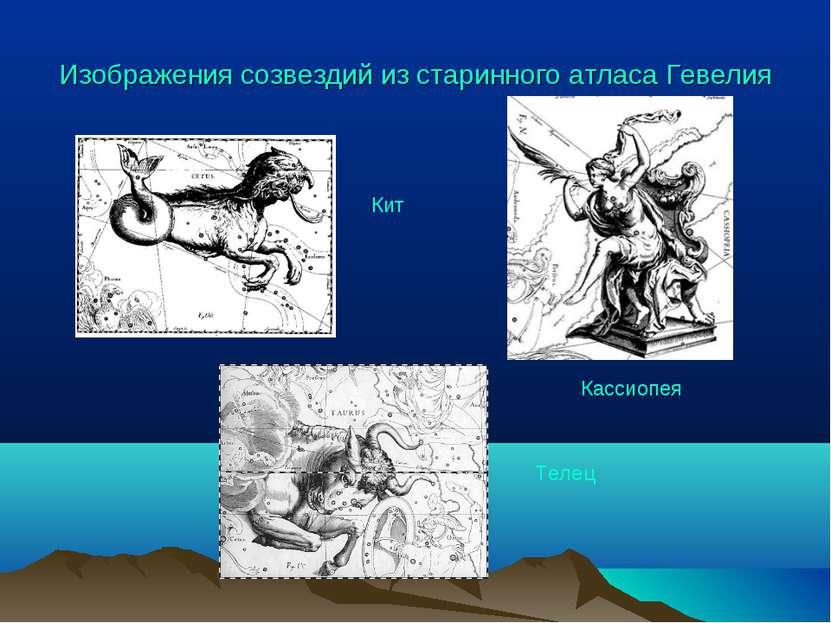 Изображения созвездий из старинного атласа Гевелия Телец Кит Кассиопея