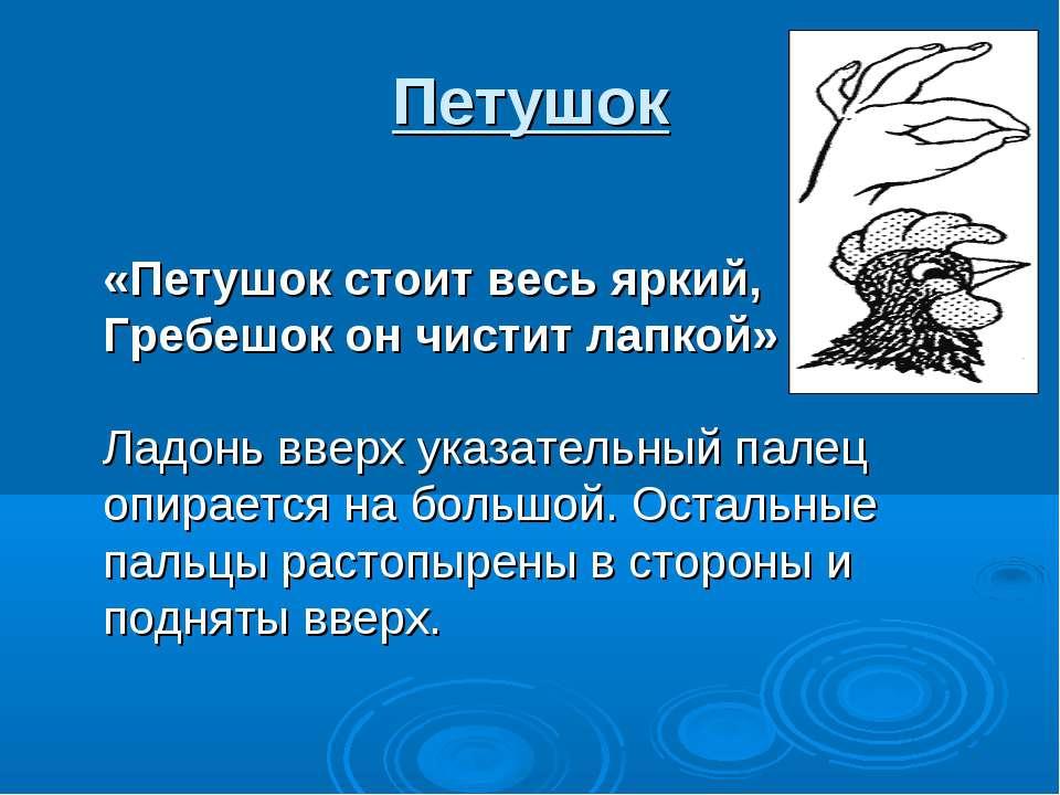 Петушок «Петушок стоит весь яркий, Гребешок он чистит лапкой» Ладонь вверх ук...
