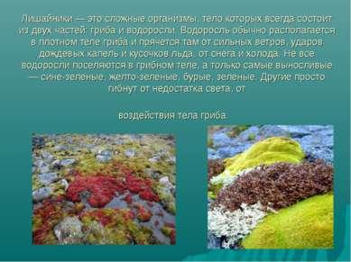 Лишайники — это сложные организмы, тело которых всегда состоит из двух частей...