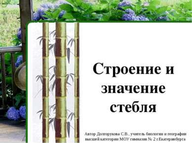 Виды стеблей по степени одревеснения Травянистые Деревянистые
