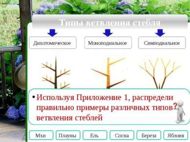 Словарь Годичное кольцо – это… годичный прирост древесины, хорошо заметный у ...